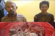 Asyik Manen Sarang Burung Walet, 2 Pencuri Ditangkap Pemilik di Dalam Sarang