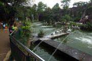 Hari Pertama Liburan, Taman Margastwa Ragunan Didatangi Ratusan Pengunjung
