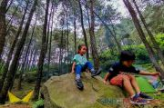 Liburan ke Bogor, Jangan Lupa Kunjungi Lima Tempat Wisata Ini