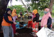 Kelompok Wanita Tani di Pangandaran Berhasil Produksi Pupuk Organik Berbahan Sampah