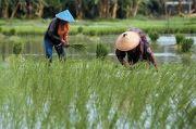 Bendungan Tapin Rampung, Dukung Peningkatan Produksi Pangan di Kalsel