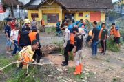 Pohon Besar di Tasikmalaya Tumbang Timpa Pemotor dan 2 Rumah Warga