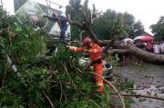 Pohon di Bogor Bertumbangan, BMKG Imbau Masyarakat Waspadai Cuaca Ekstrem