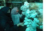 FMIPA UI Kembangkan MikoGrow, Digitalisasi Sistem Pantau Budidaya Jamur Tiram