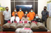 Polres Kota Jayapura Amankan Warga PNG Penyelundup Ganja