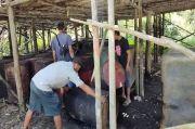 Polisi Obrak Abrik Tungku Pemasakan Minyak Ilegal di Batanghari Jambi