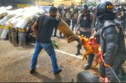 Pengunjuk Rasa Penolakan Hasil Pilkada Digigit Anjing Milik Polisi