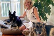 Anjing Peliharaan Joe dan Jill Biden Akan Masuk Gedung Putih