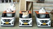 Imut Banget, Nissan Buat Mobil Mainan Buat Kucing-kucing Kesayangan