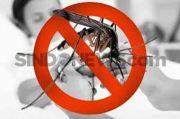 2 Warganya Terserang Chikungunya, Dinkes Cimahi Perangi Jentik
