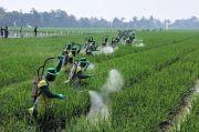Kejar Ketahanan Pangan, Kadin Gelar Jakarta Food Security Summit