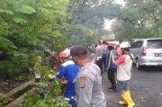 Diterpa Pohon Tumbang, Tiga Pemotor Dilarikan ke Rumah Sakit