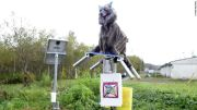 Robot Serigala Dipasang Untuk Melindungi Warga Jepang