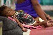 Awas! Corona Berkepanjangan, Kelaparan Mengancam