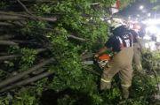 Pohon Kedongdong Tumbang di Cakung, Tutup Badan Jalan dan Timpa Kabel Listrik