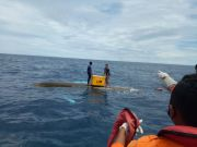 Perahu Dihantam Gelombang di Mentawai, Dua Nelayan Terapung