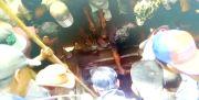 Tragis, 4 Warga Lombok Tewas dalam Sumur, Diduga Keracunan
