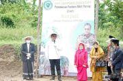 Nilai Jual Tinggi, Wakil Ketua MPR Dorong Kemandirian Santri lewat Porang