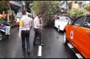 Pohon Tumbang Timpa Mobil Terpakir, Pemilik Histeris