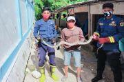 Petugas Damkar Evakuasi Ular Sanca di Pulau Lancang