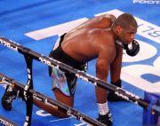 Dubois Dihina, Dubois Dibela, Fury Bela Mike Tyson Baru Menyerah!