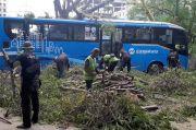 Akibat Angin Kencang, Pohon Tumbang Timpa Bus Transjakarta di Ancol