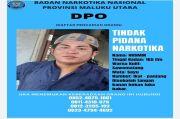 BNNP Maluku Utara Sebar Foto Oknum Anggota Polri yang Jadi Buronan