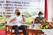 Pertama di Indonesia, Koperasi Unggas Masuk Bisnis Hulu Pembibitan GPS