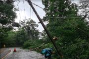 Sempat Padam Akibat Cuaca Ekstrem, PLN Pastikan Ribuan Gardu Telah Pulih