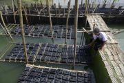 Wisata Bahari Jadi Tumpuan Surabaya Selama Pandemi, Ini yang Dilakukan Risma