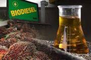 Industri Minyak Nabati Dukung Penerapan Tarif Pungutan Ekspor Sawit