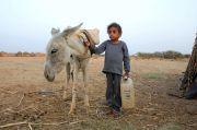 Covid-19 dan Perang Membuat 270 Juta Warga Dunia Terancam Kelaparan