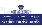 Kesembuhan Covid-19 Terus Bertambah Menjadi 510.957 Orang