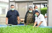 Kembangkan Desa, Fahri Hamzah Belajar Inovasi Pertanian ke IPB University