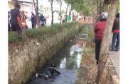 Viral! Video Perampok Masuk Got Dilempari Batu oleh Warga di Tangerang