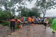Sejumlah Pohon Tumbang Terjadi di Gowa Akibat Cuaca Buruk