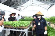 Kementan: Optimalkan Lahan Pekarangan Rumah untuk Bertani