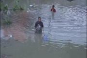 Ribuan Ikan Mabuk di Sungai Wonokromo Surabaya Jadi Rebutan Warga