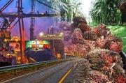Pandemi Gak Ngaruh, Devisa dari Sawit Bisa Tembus USD20 Miliar