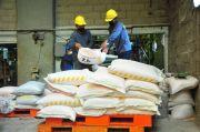 Teknologi DPCS Diyakini Bisa Antisipasi Kelangkaan Pupuk di Tanah Air