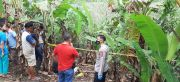 Terjerat Jebakan Hama Beraliran Listrik, Pemuda di Sumsel Tewas Kesetrum