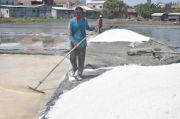 2020 Kendala Bagi Pengolahan Garam Akibat Tingginya Curah Hujan