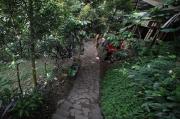 Alami Kerusakan Lingkungan, Puluhan Mata Air di Bandung Kritis