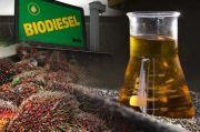Penggunaan Minyak Jelantah Sebagai Bahan Baku Biodiesel Atasi Fluktuasi HIP