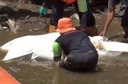 Evakuasi Mayat Wanita di Kali Ciliwung Terkendala Jasad yang Membengkak