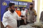 Buron 6 Bulan, Pemilik 1 Hektare Ladang Ganja di Gayo Lues Dibekuk