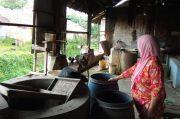 Persediaan Kedelai Aman Tapi Harga Tinggi, Produsen Tahu Tempe di Purwakarta Enggan Produksi