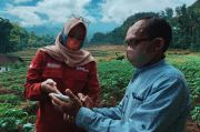 BNI Uji Coba Smart Farming di 5 Provinsi