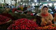 Harga Cabai di Pasar Induk Tradisional Jagasatru Mulai Turun
