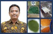 IPB Kembangkan Teknik Pengeringan Sederhana Tanpa Rusak Warna Produk